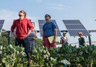 Zonne-energie zonder eigen zonnepanelen