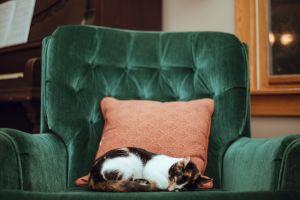 Een comfortabel en energiezuinig huis in de wintermaanden